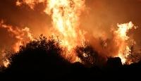 Hatay'da otluk alanda yangın