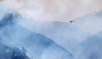 Kanarya Adaları'ndaki yangında 12 bin hektardan fazla alan kül oldu