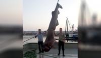 Balıkçı ağına 1 tonluk köpek balığı takıldı