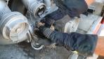 Alevlerin arasında kalan bukalemunu itfaiye eri kurtardı