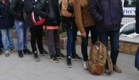 Edirne'de bir haftada 4 bine yakın göçmen yakalandı