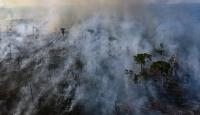 5 soruda Amazon Ormanları yangını