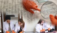 Dolmabahçe Sarayı'nda 132 yıllık Japon gazete kupürleri bulundu