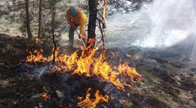 """Orman yangınlarına karşı """"gönüllü"""" seferberliği"""