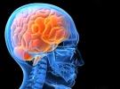Beyin, hastalığı hemen fark ediyor