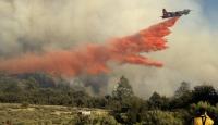 İsveç'te büyük orman yangını