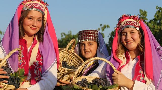 Edirne'de üzüm bağlarına gırnatayla girildi