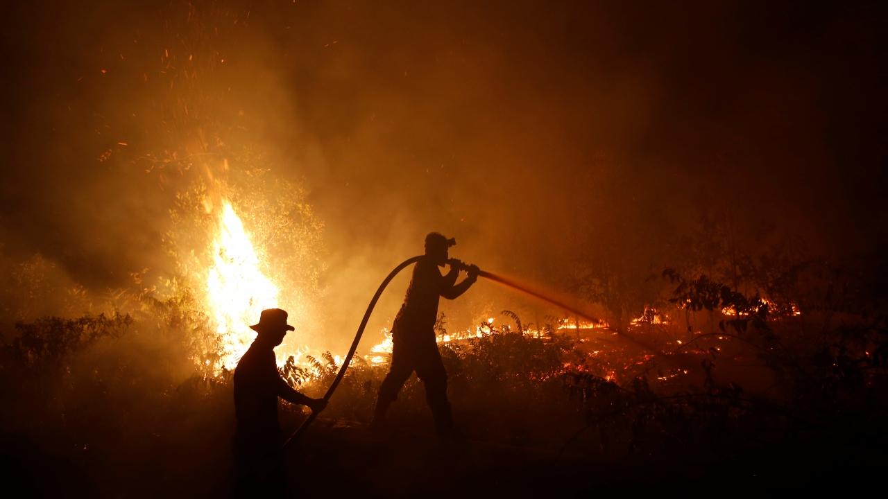 Endonezyadaki orman yangınları