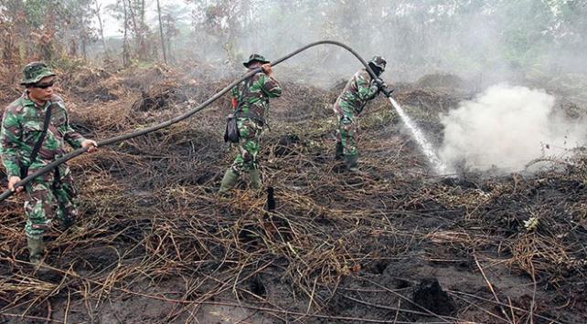 Endonezyadaki orman yangınlarıyla ilgili 185 kişi gözaltına alındı