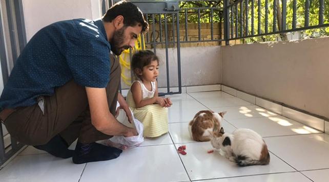 Hayvansever imam 6 sokak kedisine sahip çıktı