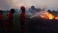 Endonezya'daki orman yangınları için özel ekip kurulacak