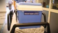 Nakil böbrekle 12 yıl yaşayan kadının karaciğeri başka bir hastaya umut oldu