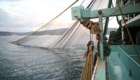 Denizlerde balık stoku azalıyor