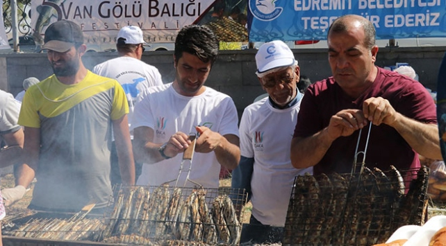 Vandaki festivalde bir ton inci kefali dağıtıldı