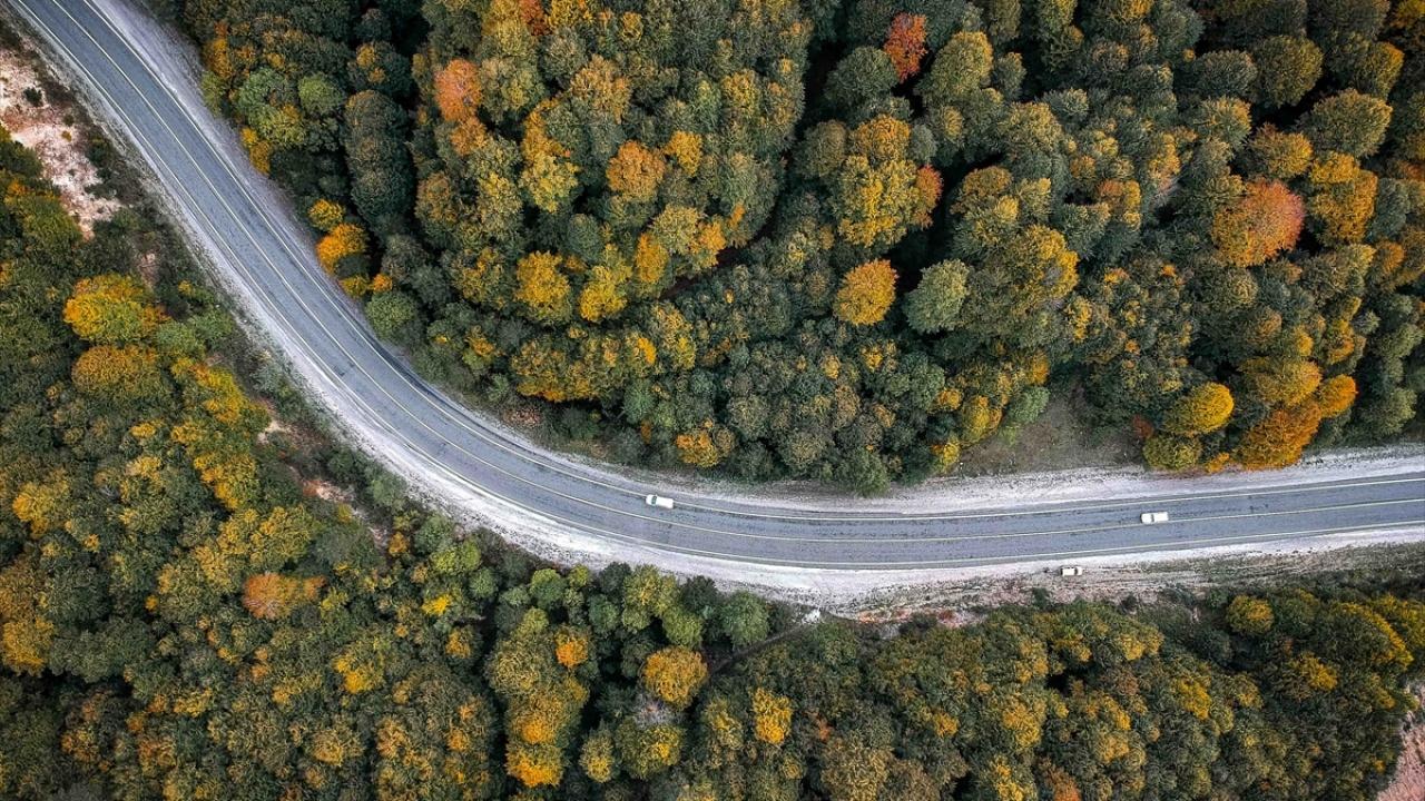 Domaniç Dağlarında sonbaharın ilk renkleri