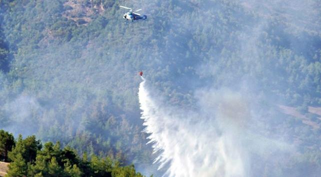 Hatayda orman yangınları: İki hektar alan zarar gördü