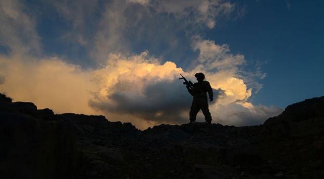 Van kırsalında 2 terörist etkisiz hale getirildi
