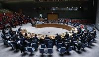 Rusya'dan BMGK'ya Barış Pınarı Harekatı vetosu