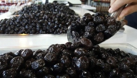 Marmarabirlik 40 bin tonun üzerinde ürün alımı yapacak