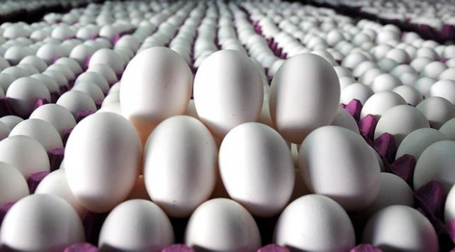 Yumurta üreticisinden ABD'ye ilk sevkiyat