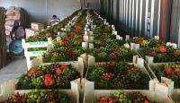 Türk kadınlarının el emeği süsleri Avrupa'ya ihraç ediliyor