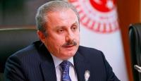 TBMM Başkanı Şentop: Türkiye, Suriye'de kalıcı barışın sağlanması için her türlü girişimin içinde