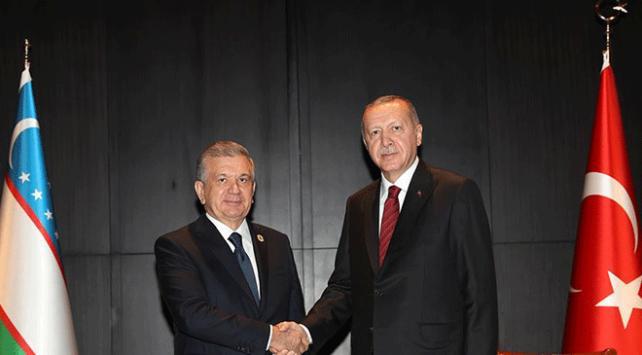 Cumhurbaşkanı Erdoğan Özbekistan Cumhurbaşkanı Mirziyoyev ile görüştü