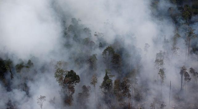 Endonezyadaki orman yangınları eğitimi de etkiledi