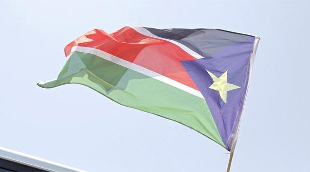 Sudanda Uçak Düştü