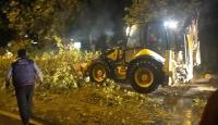 Antalya'da şiddetli fırtına: Ağaçlar yerinden söküldü