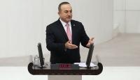 Dışişleri Bakanı Çavuşoğlu: YPG bize saldırması için DEAŞ'lıları serbest bıraktı, onlara para verdi