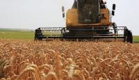 Tarımsal desteklerde yüzde 37 artış oldu