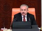 TBMM Başkanı Şentop: Barış Pınarı Harekatı hedeflerine ulaşmıştır