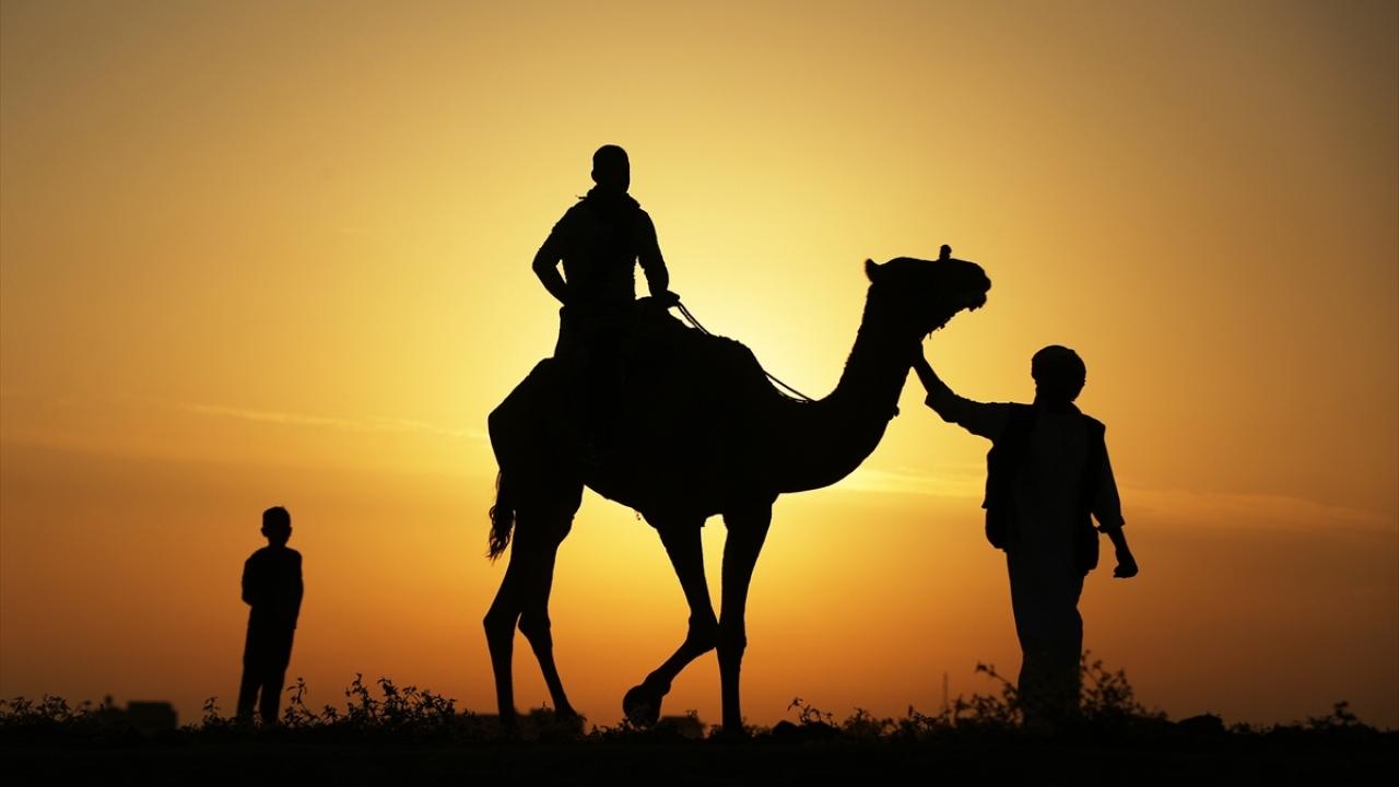 Gazzede deve yarışı