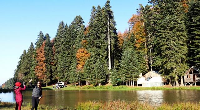 Düzce yaylaları sonbahar manzarasıyla ziyaretçilerini ağırlıyor