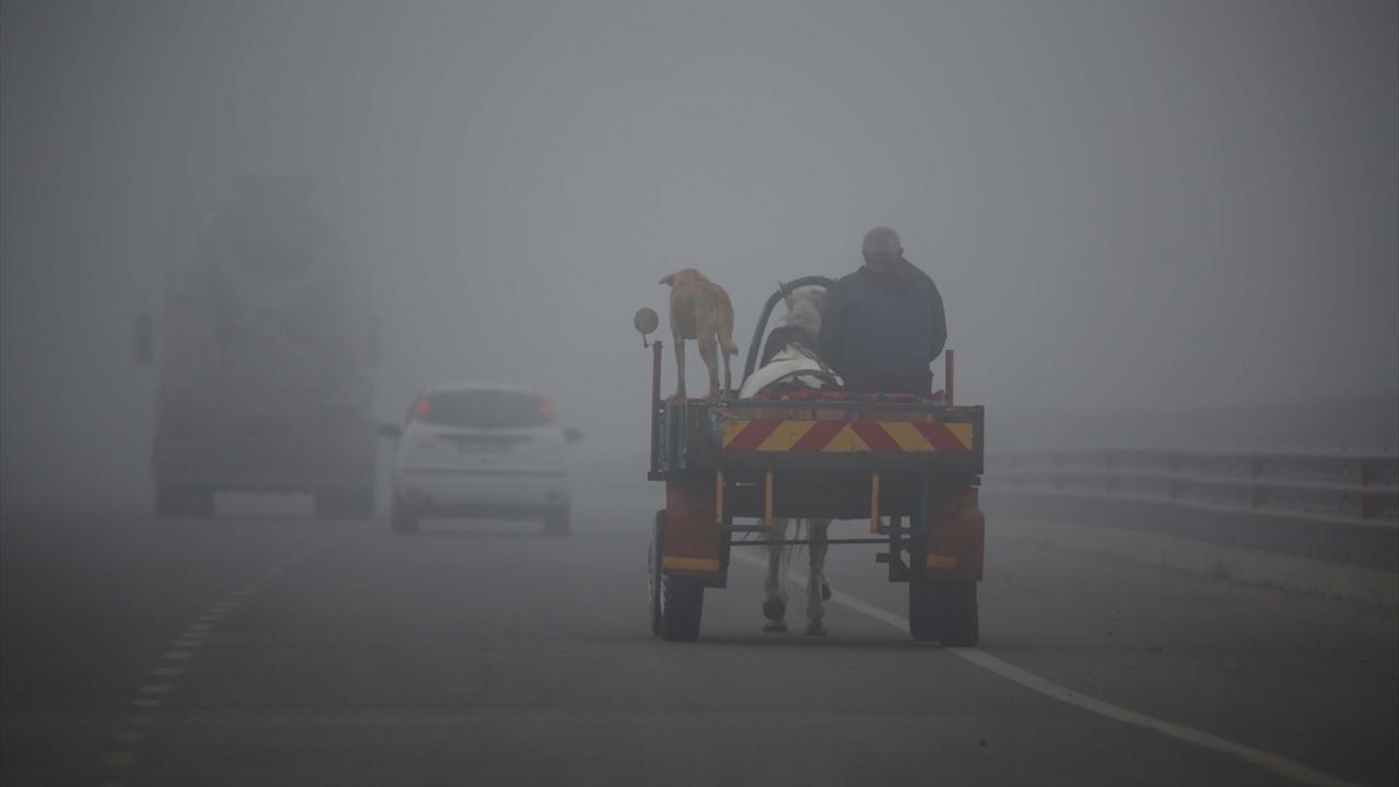 Edirnede yoğun sis