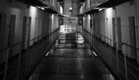 Esed rejiminin hapishanelerinde 14 binden fazla kişi işkenceden öldü