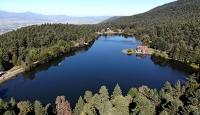 Türkiye'de 3,2 milyon hektar alana özel statülü koruma