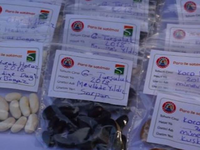Çiftçiler yerli tohumları takas için Samsun'da buluştu
