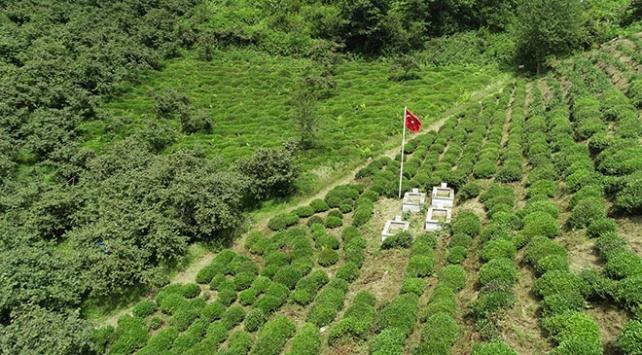 Şaban Kalesi tabiat parkı olarak turizme hizmet edecek