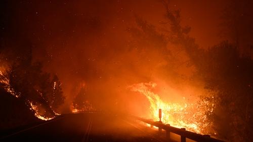 California'da yangınlar nedeniyle binlerce kişi tahliye edildi