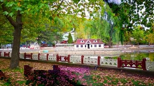 Konya'daki Kuğulu Milli Parkı ziyaretçilerini ağırlıyor