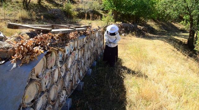 Kadın arıcı kovan sayısını 4 yılda yaklaşık 19 katına çıkardı