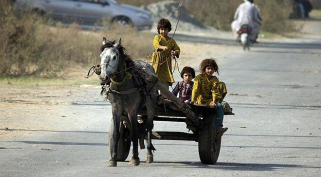 Pakistanın en yoksul kentinde 10 ayda 703 çocuk öldü