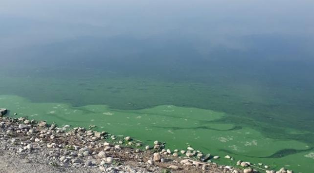 Atatürk Baraj Gölünün kıyısındaki renk değişimi için inceleme başlatıldı