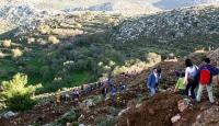 Bereket Ormanları projesiyle 1 milyon 157 bin fidan toprakla buluştu