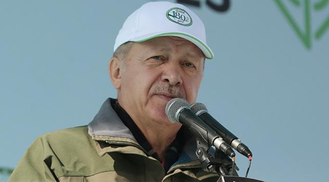 Cumhurbaşkanı Erdoğan: Ağaç bahanesi ile şehirleri yakanlar nerede?