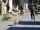 Barış Pınarı bölgesinde 1260 EYP ve mayın etkisiz hale getirildi