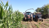 Çiftçilere 284 milyon liralık destek ödemesi