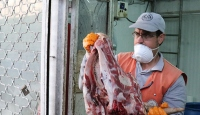 Sakarya'da 20 ton kaçak et ve sakatat ele geçirildi